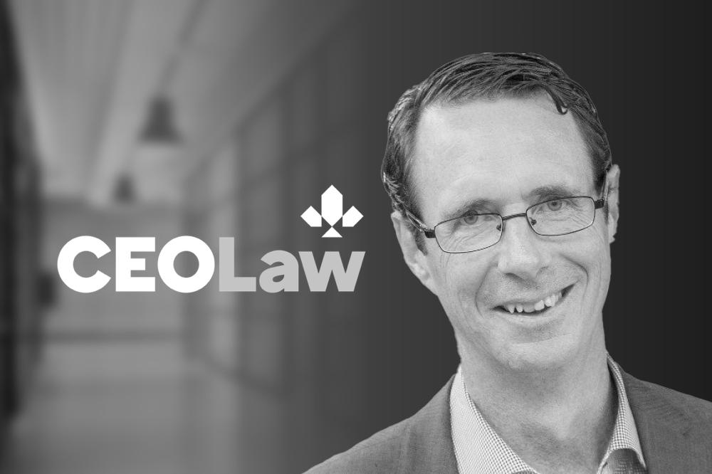 alternative legal services provider